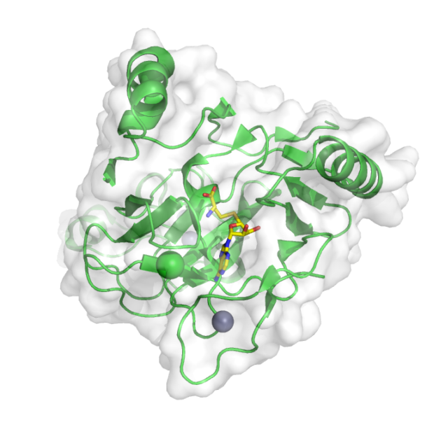 protein methyltransferase NSD1 (PDB ID 4h12)